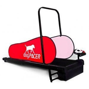 dogPACER LF 3.1 Dog Treadmill Review