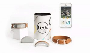 Link AKC GPS dog collar in the box