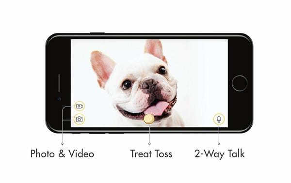 process how furbo dog camera gives treats on smartphone screen