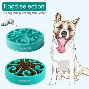 Siensync interactive slow feeder is a great solution to keep your pooch busy.