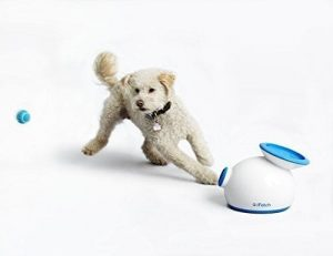 iFetch Interactive Ball Launcher review