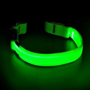 Lightweight, HiGuard LED Dog Collar with green light in the dark.
