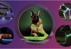 The selection of 5 best led collars on dogs of the list of 17 in our article.