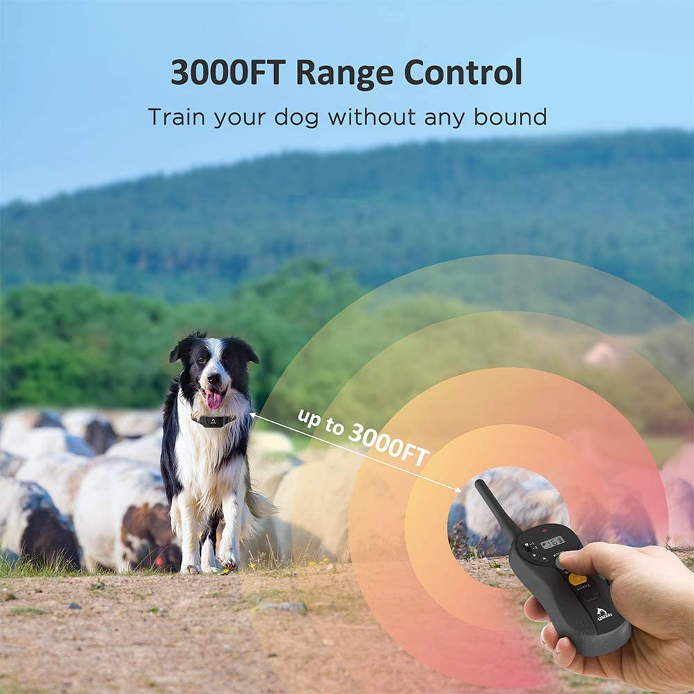 3000ft Patpet training collar's range shown on the image