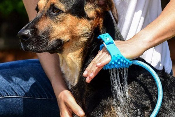 Aquapaw dog bathing glove review