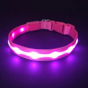 HOLDALL Led Dog Collar in pink color.