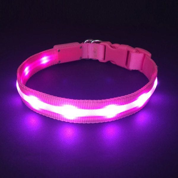 HOLDALL Led Dog Collar