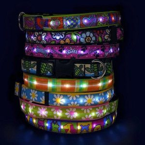8 variations of Hot Dog LED light up collars in different and unique design.