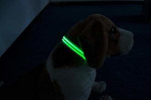 Moco Light Up Collar with greed LED light on soft dog.
