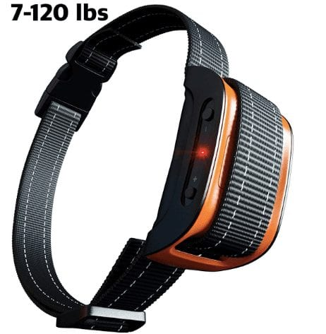 Nicexx Anti-Bark Collar