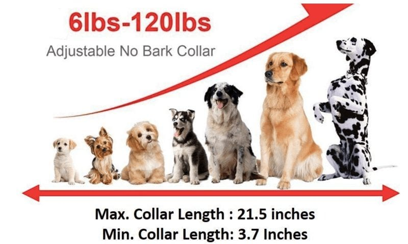 POP VIEW Bark Collar dimensions