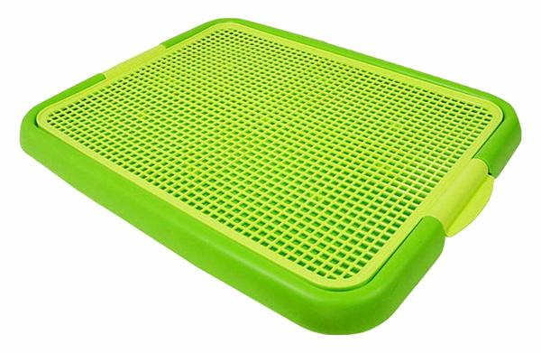 ANYPET Indoor Dog peeing pad in green color.