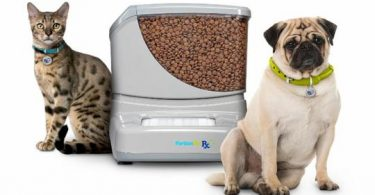 PortionPro Rx Pet Feeder Review