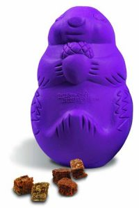 PetSafe Busy Buddy Squirrel Dude interactive Toy