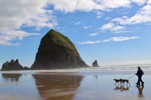 dog walking at cannon beach