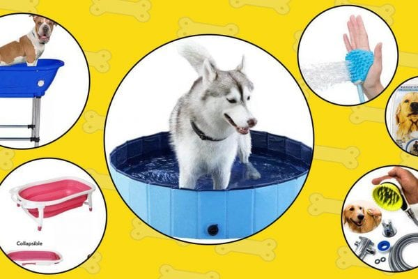 dog bathing tools 2019