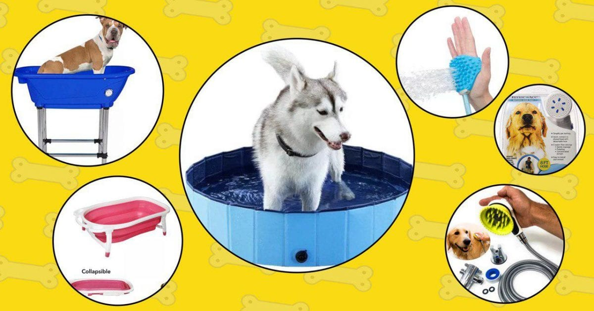 5 best dog bathing tools from the list