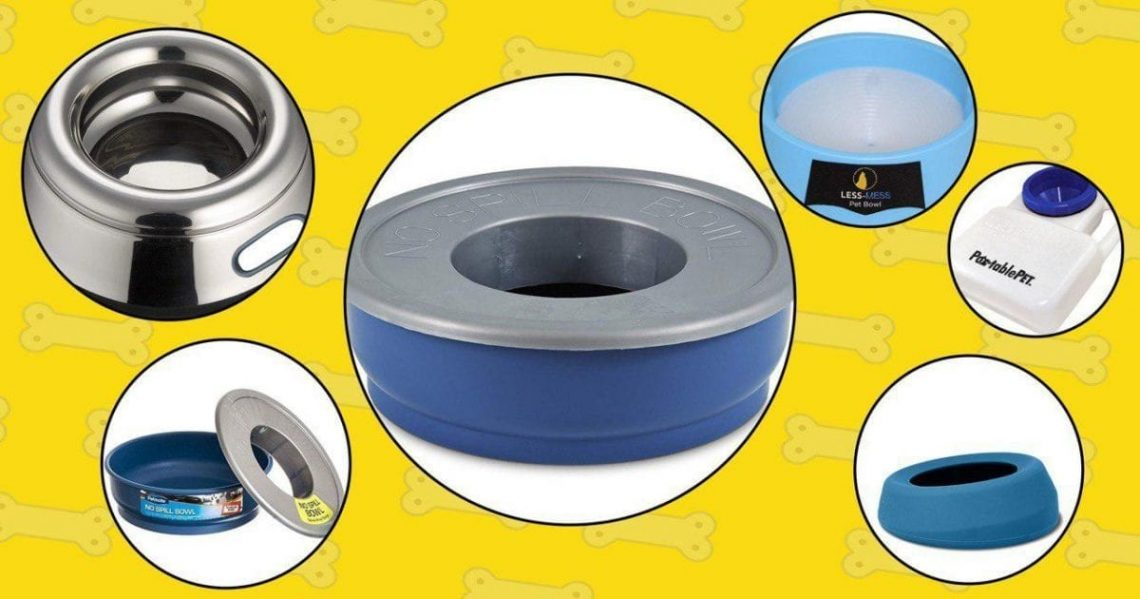 Best No Spill Dog Water Bowls in 2019
