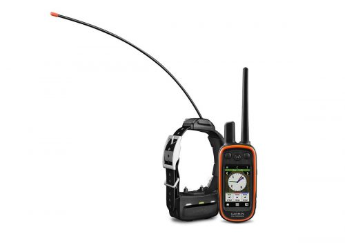 Garmin Alpha 100 Bundle with GPS collar and remote control for dog training.