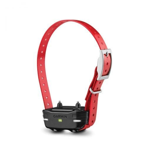 Garmin PT10 Dog Training Collar on active mode in red color.