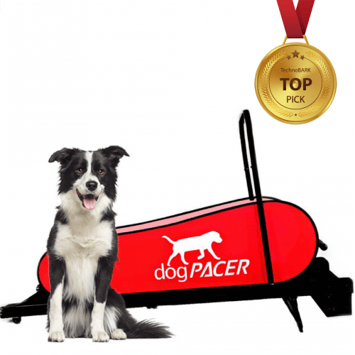 dog treadmill top pick by technobark