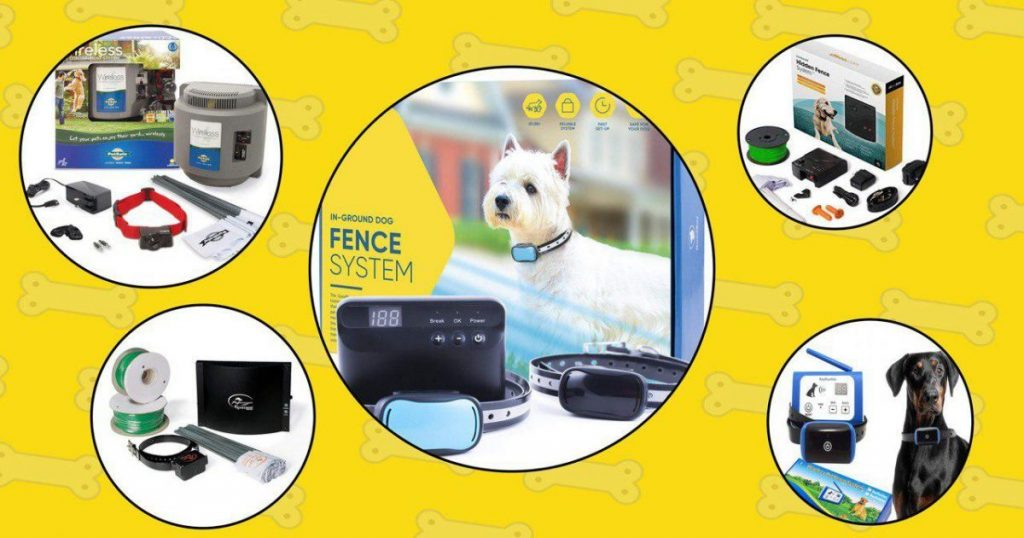 Best Invisible and Wireless Dog Fences