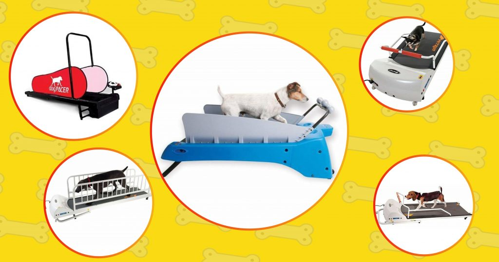Techobark has review and tested over 100 different dog treadmills and we selected 7 best ones and placed 5 of these in this image.