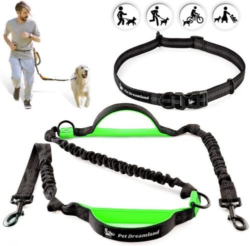 Man is running with a dog using hands-free dog leash from Pet Dreamland.