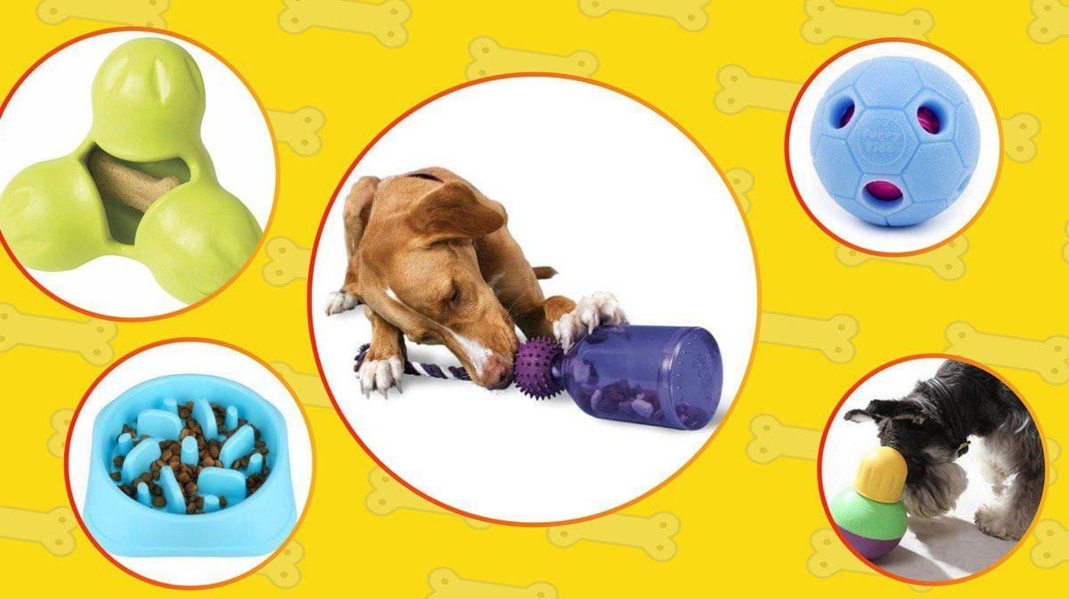 Best interactive dog toys in 2020: 20 toys that worth buying.