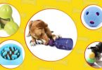 Best interactive dog toys that keep dog busy and relieve their boredom.