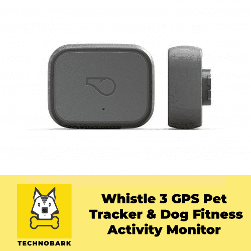 Whistle 3 dog activity tracker is a FitBit for dogs.
