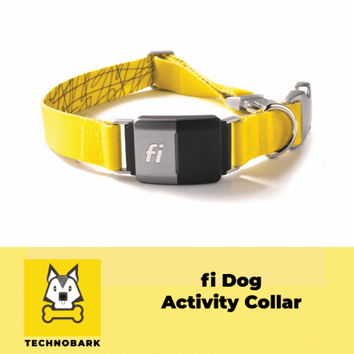 fi dog collar for tracking dog's activity.
