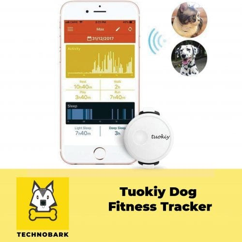 Tuokiy dog fitness tracker data records on the smartphone screen.