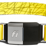 fi Activity tracker collar for dog in yellow colour.