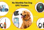 5 no fee dog GPS trackers.