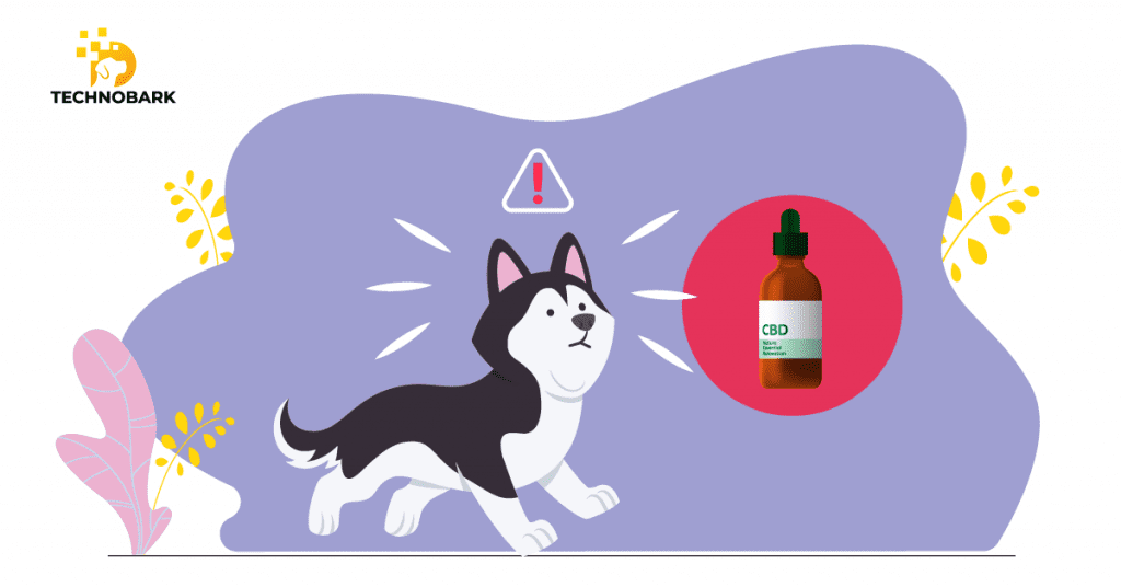 Similar to humans, CBD helps dogs with glaucoma.