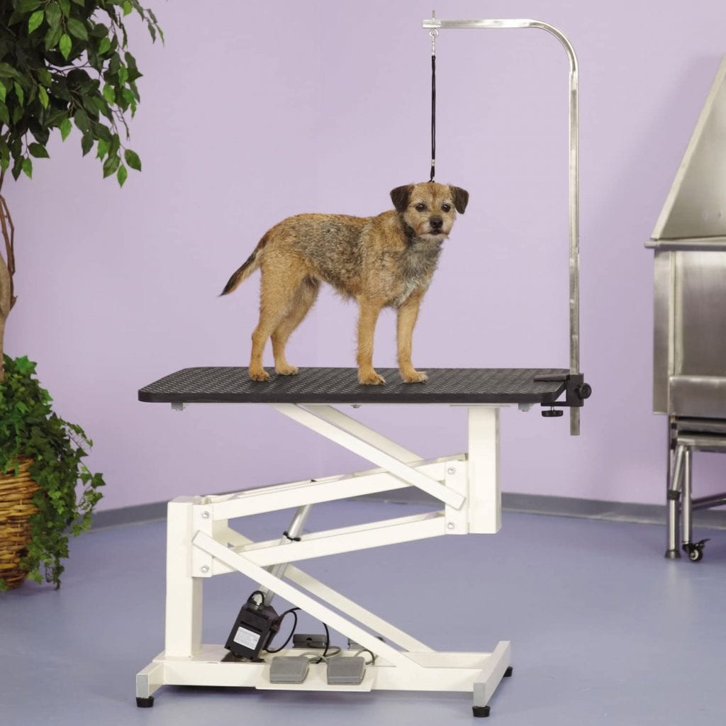 Master Equipment Electric table is used for dog grooming purposes