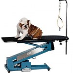 French Bulldog on the PetLift MasterLift Low-Rider Electric Grooming Table thumbnail