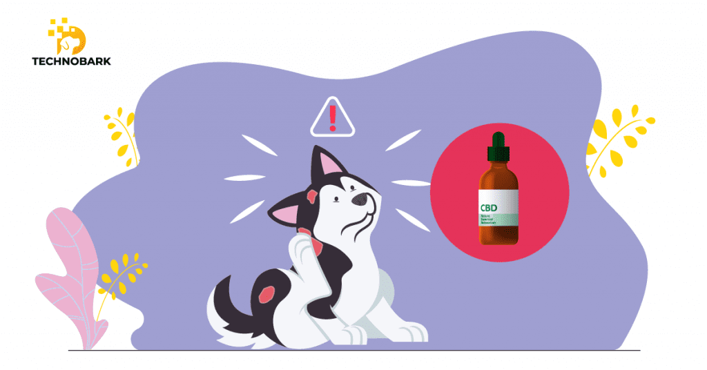 CBD helps to improve dog skin conditions
