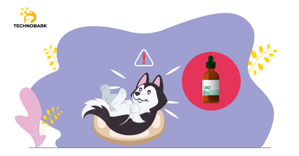 Dogs suffering from insomnia can use CBD.
