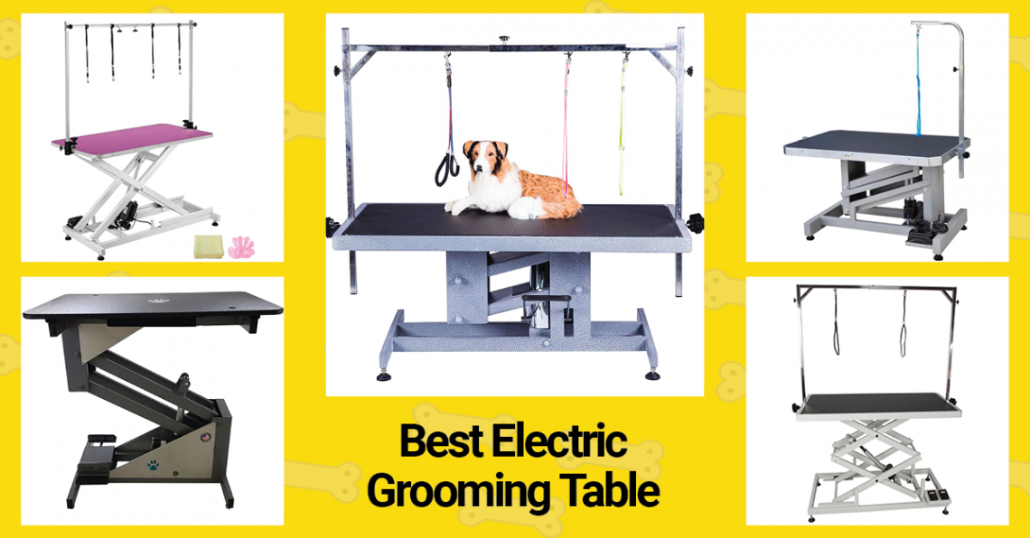 Best Electric Grooming Table in 2021