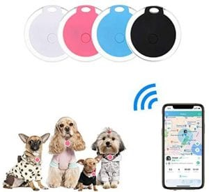 GPS tag for small dogs