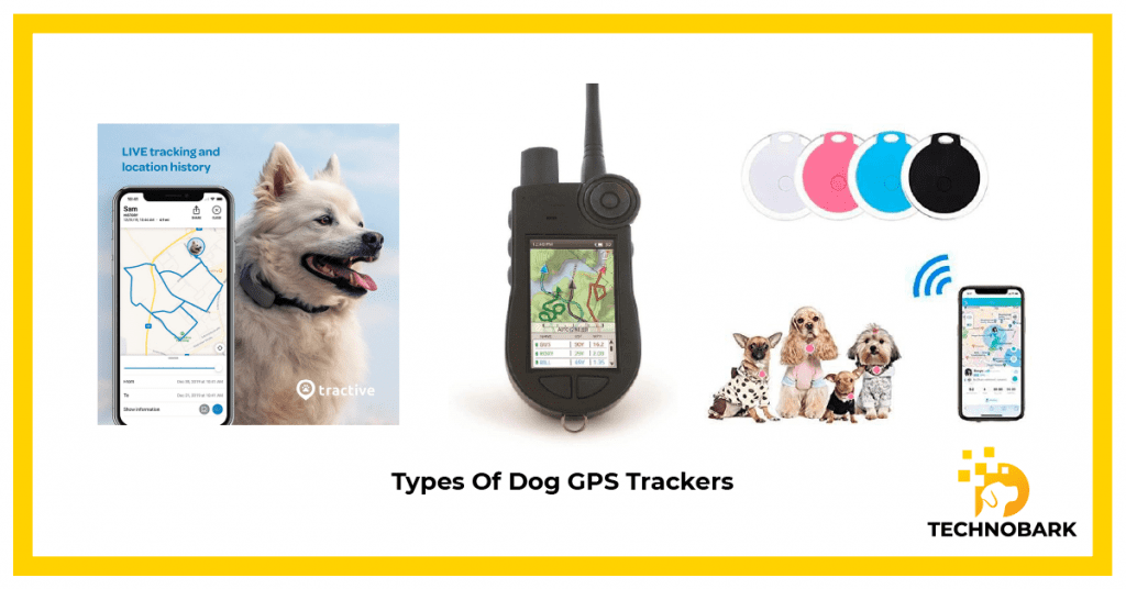 Bluetooth, GPS and no cell service dog tracking collar types