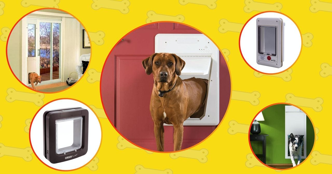 The list of the best smart dog doors by Technobark