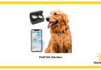 Reviewing PEtFON Pet GPS Tracker and testing it on Gold Retriever