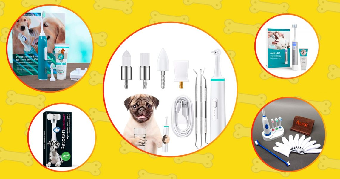 Top-rated dog electric toothbrushes