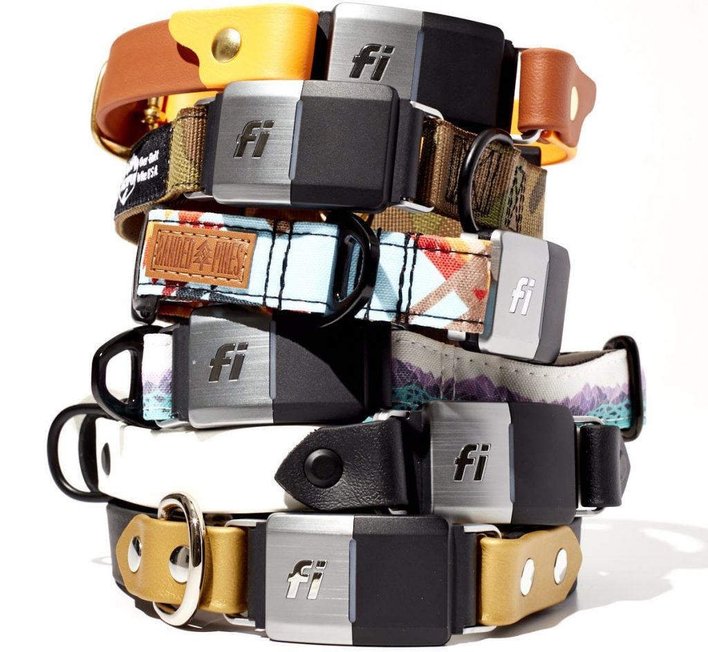 Different colours and designs of Fi collar