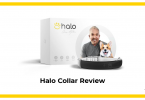 Halo Collar Review