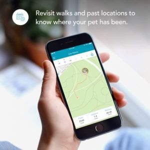 Findster Duo+ has many general features