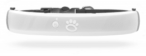 Halo collar with dog GPS tracking feature design